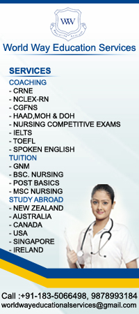World Way Education Services
